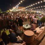 Lo Mejor de 35 Viñas Independientes en MOVI NIGHT 5
