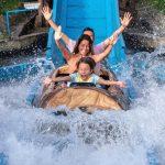 Viajar con niños: todo lo que debes saber para disfrutar en familia