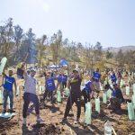 Reconocerán las mejores prácticas sustentables realizadas por ciudadanos para frenar el cambio climático