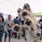 El MNHN una vez más es la casa del Día de la Fauna Chilena