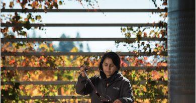 Nuevo programa de enoturismo:  Viña Maquis, el secreto mejor guardado de Colchagua