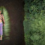 Ganadores SWPA 2020  el premio al fotógrafo del año se queda en latinoamérica y lo recibe Pablo Albarenga de Uruguay